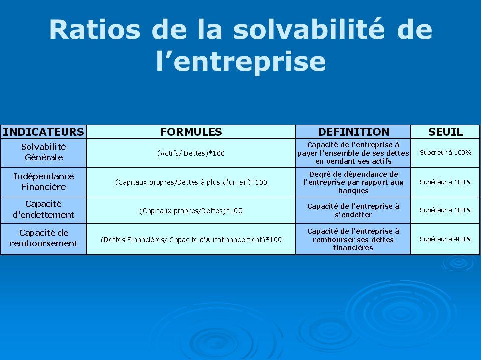 Ratios de la solvabilité de l'entreprise