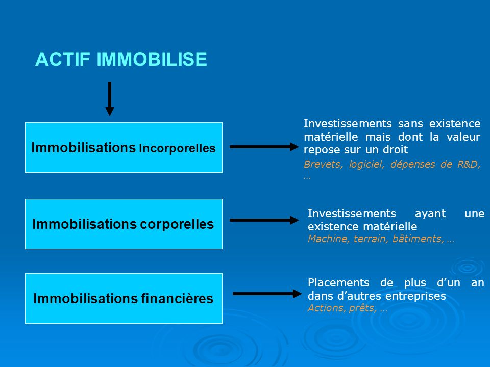 ACTIF IMMOBILISE Immobilisations Incorporelles