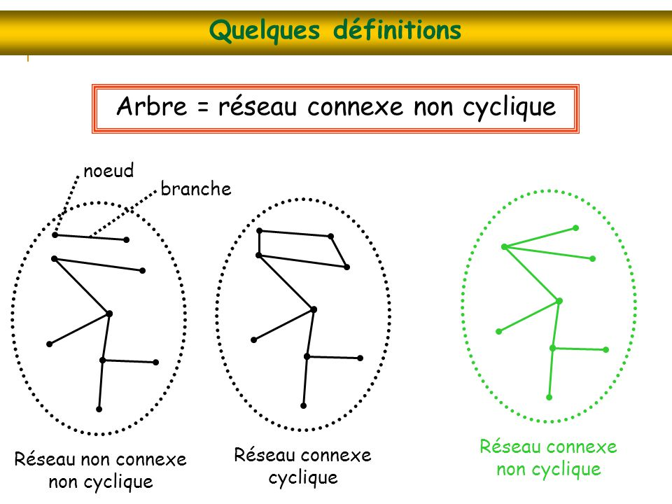 Arbre = réseau connexe non cyclique