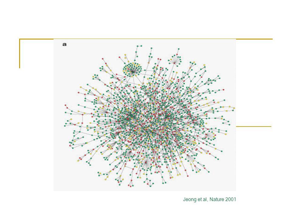 Jeong et al, Nature 2001