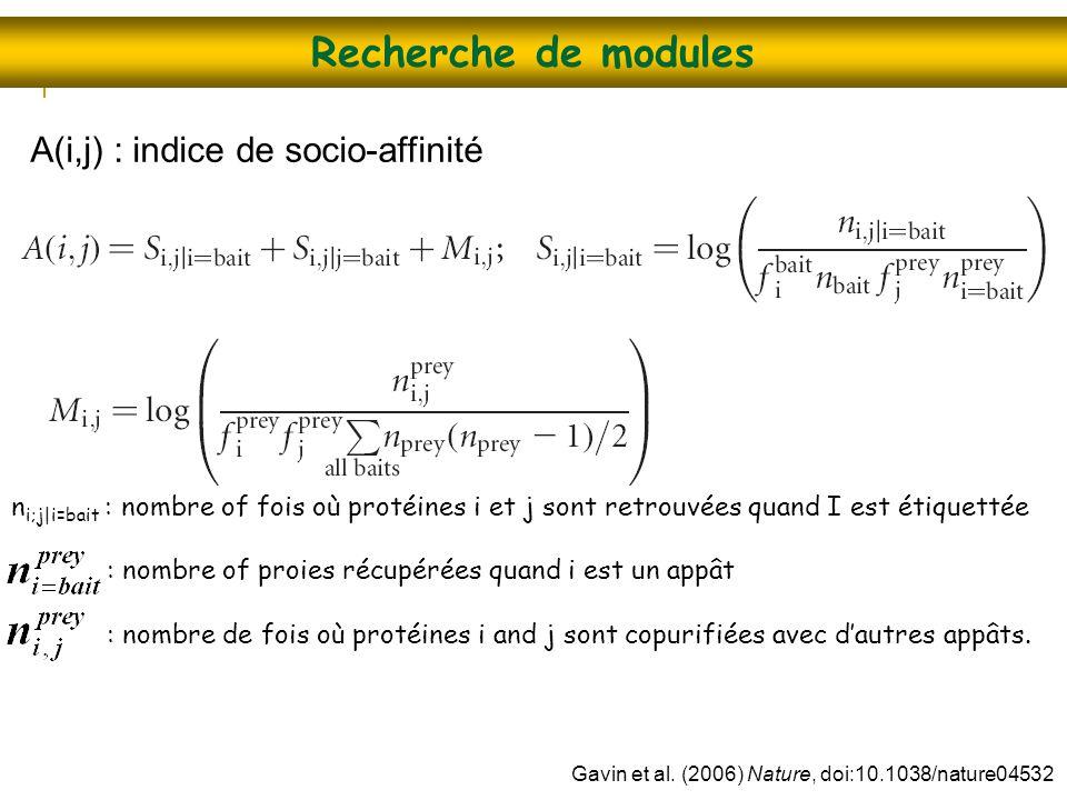 Recherche de modules A(i,j) : indice de socio-affinité