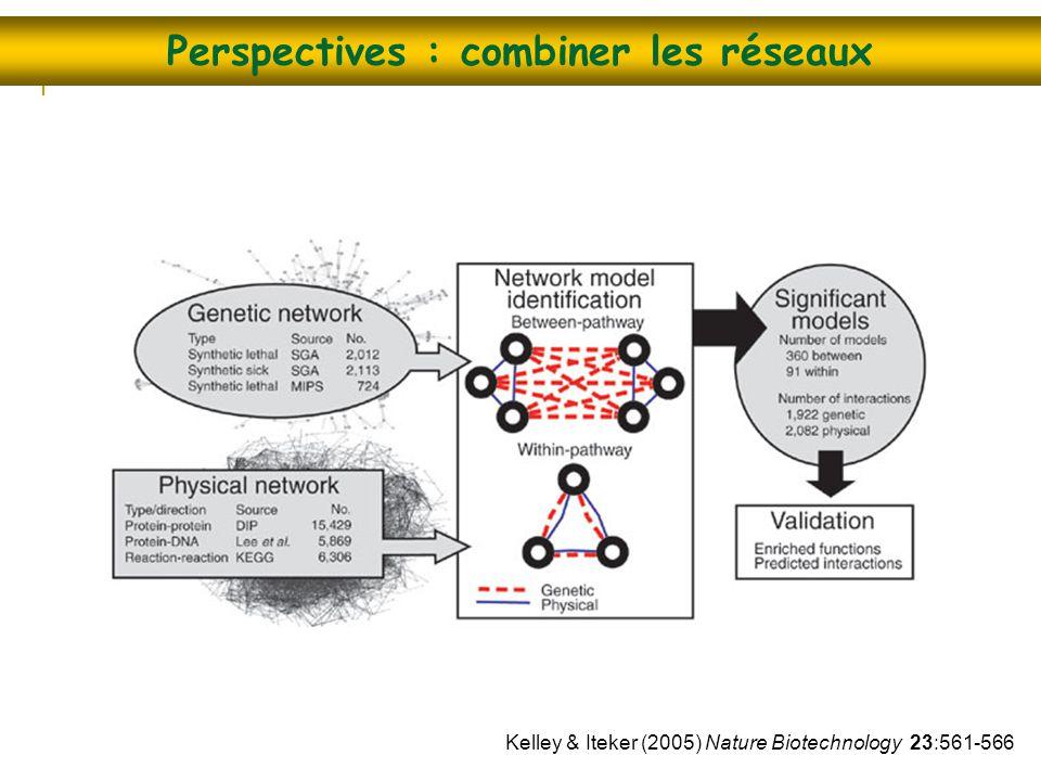 Perspectives : combiner les réseaux