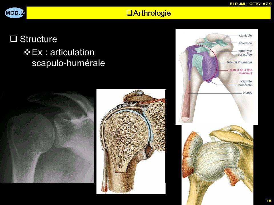 Ex : articulation scapulo-humérale