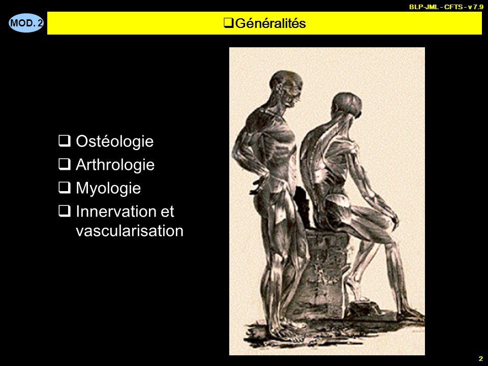 Innervation et vascularisation