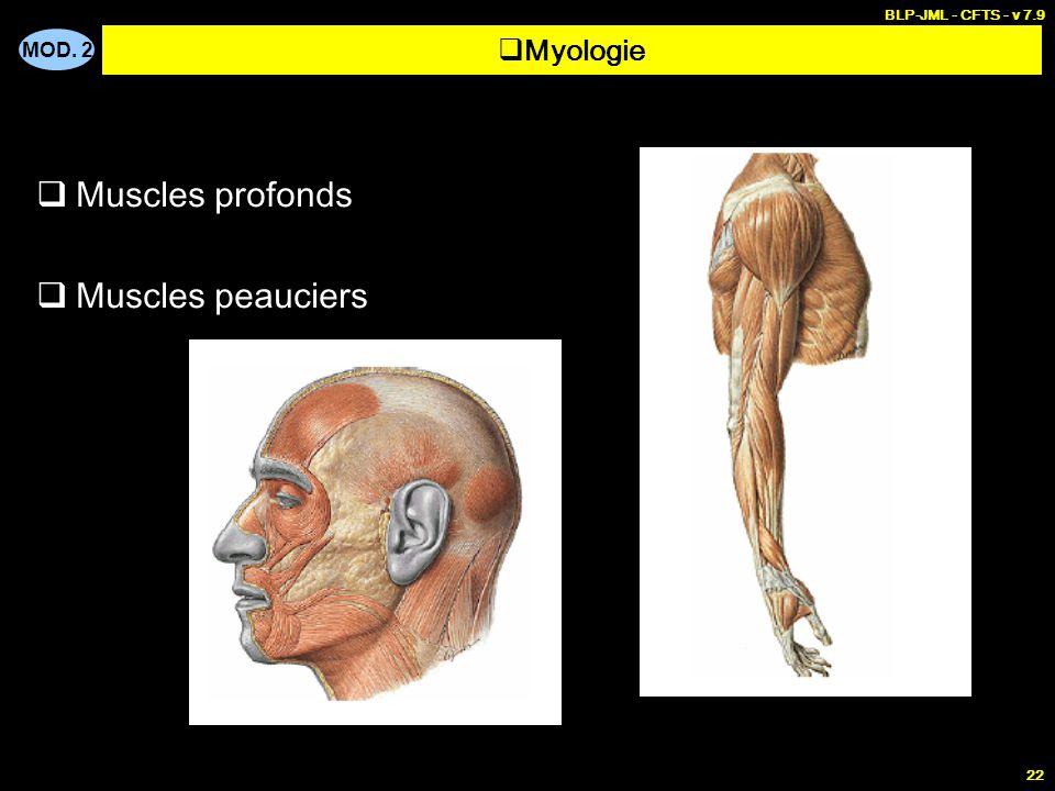 BLP-JML - CFTS - v 7.9 Myologie Muscles profonds Muscles peauciers