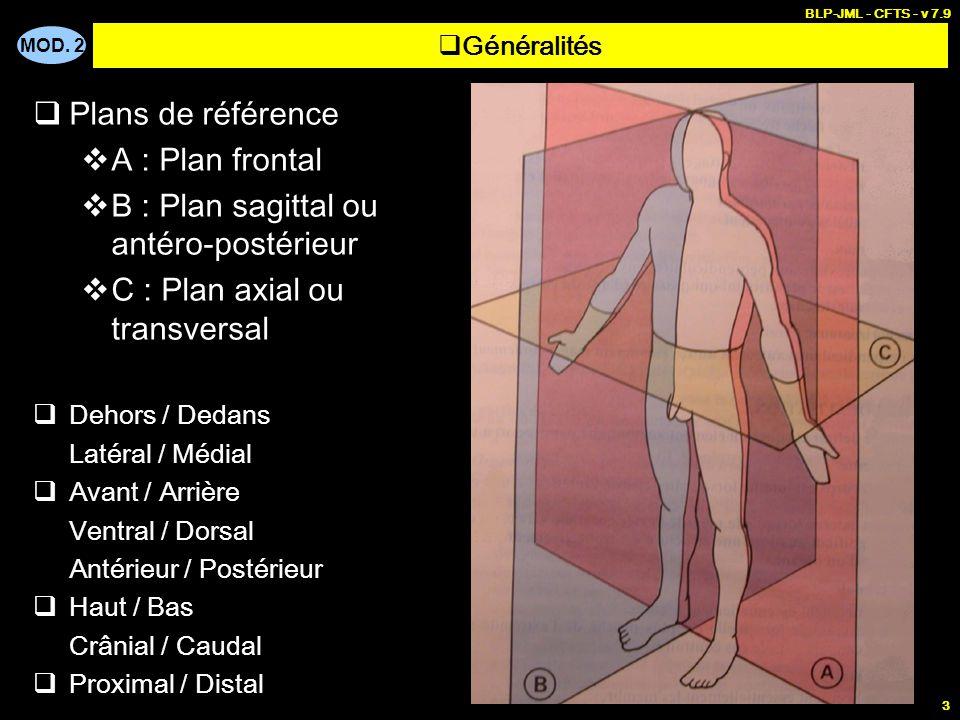 B : Plan sagittal ou antéro-postérieur C : Plan axial ou transversal