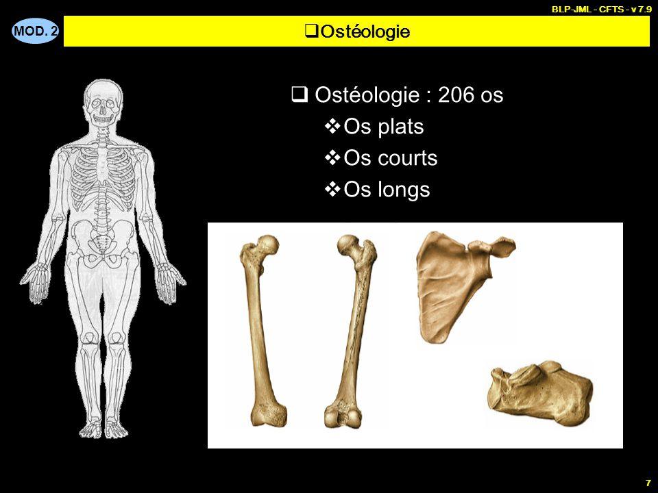 Ostéologie : 206 os Os plats Os courts Os longs Ostéologie