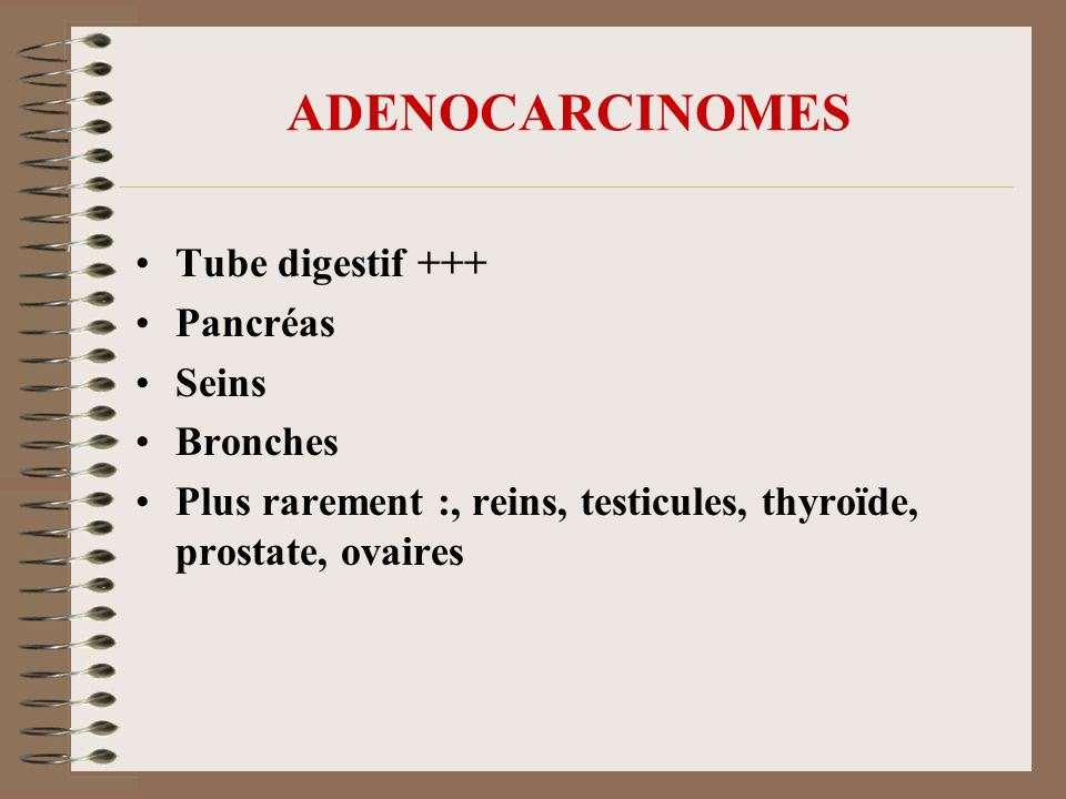 ADENOCARCINOMES Tube digestif +++ Pancréas Seins Bronches