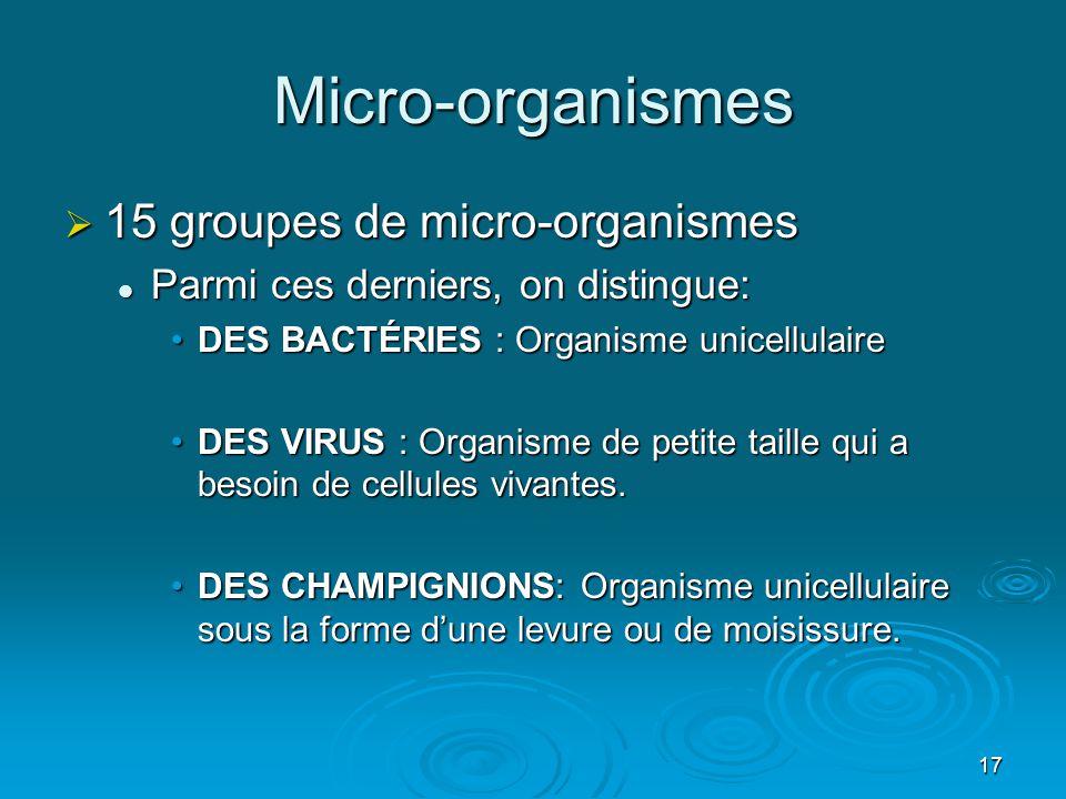 Micro-organismes 15 groupes de micro-organismes