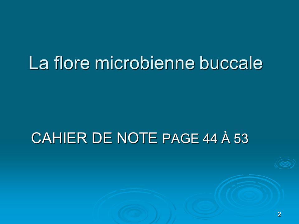 La flore microbienne buccale