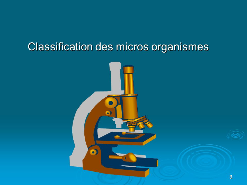 Classification des micros organismes