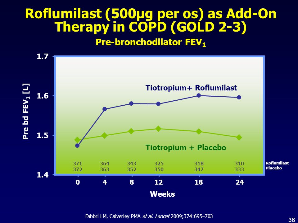 Roflumilast (500µg per os) as Add-On Therapy in COPD (GOLD 2-3)