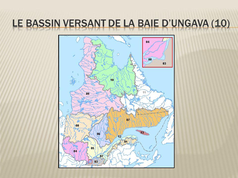 Le bassin versant de la Baie d'Ungava (10)