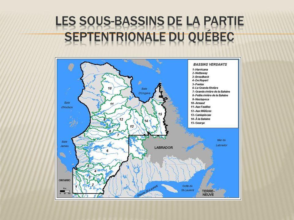 Les sous-bassins de la partie septentrionale du Québec