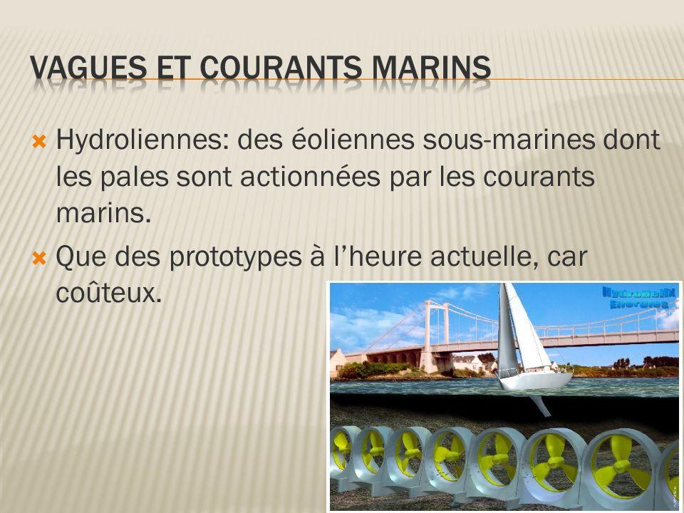 Vagues et courants marins