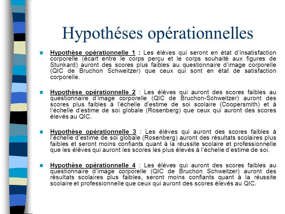 Hypothéses opérationnelles
