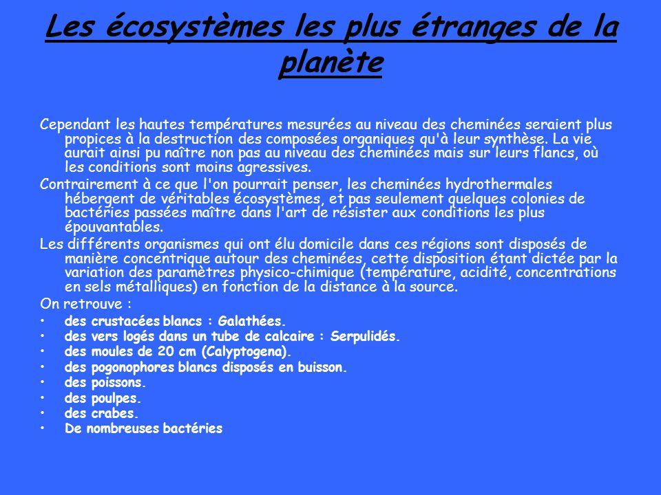 Les écosystèmes les plus étranges de la planète