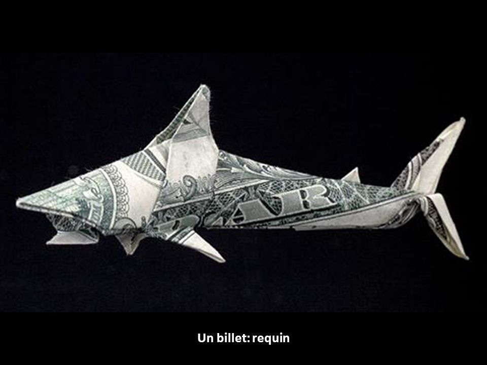 Un billet: requin