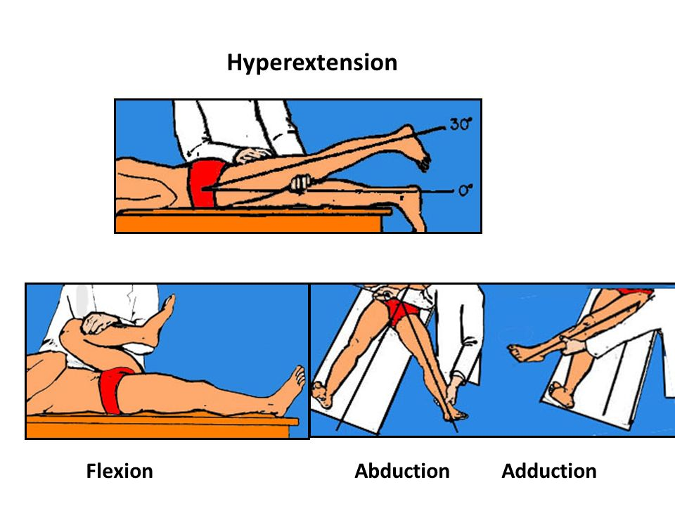 Hyperextension Flexion Abduction Adduction