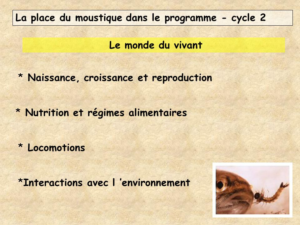La place du moustique dans le programme - cycle 2