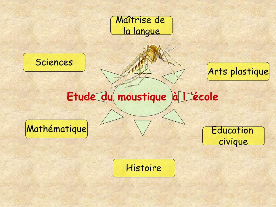Etude du moustique à l 'école