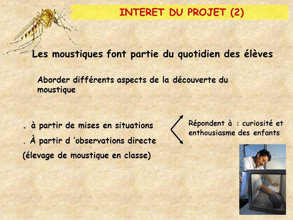Les moustiques font partie du quotidien des élèves