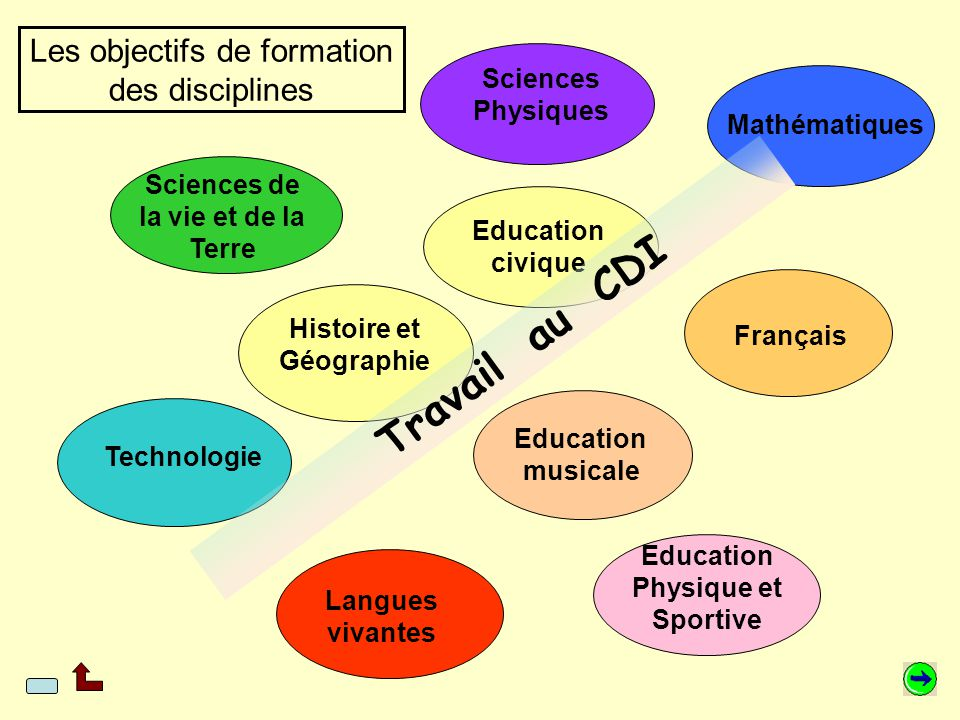 Les objectifs de formation des disciplines