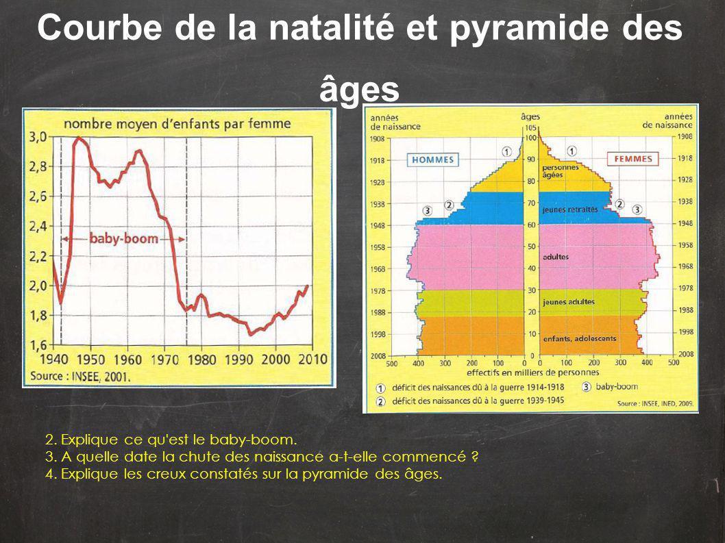 Courbe de la natalité et pyramide des âges