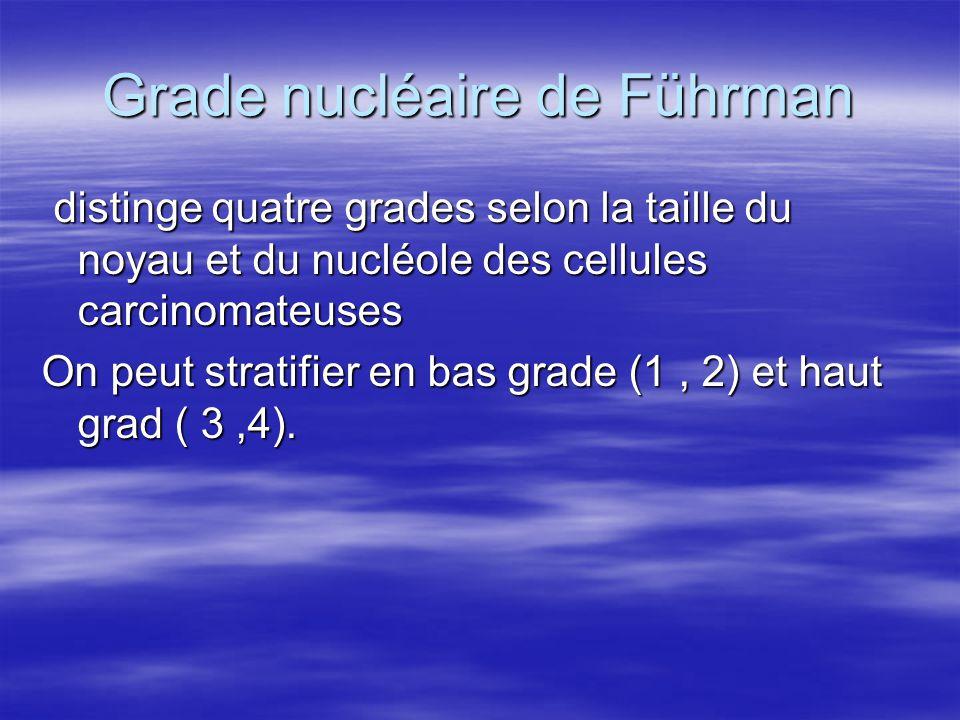 Grade nucléaire de Führman