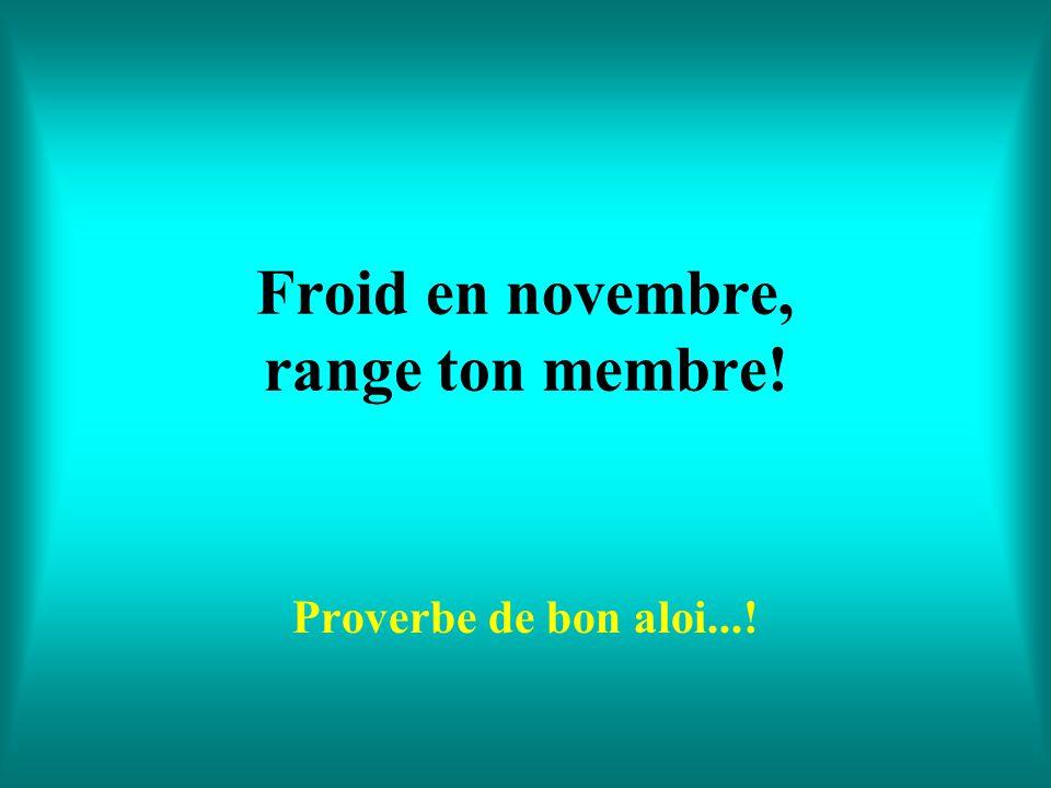 Froid en novembre, range ton membre!