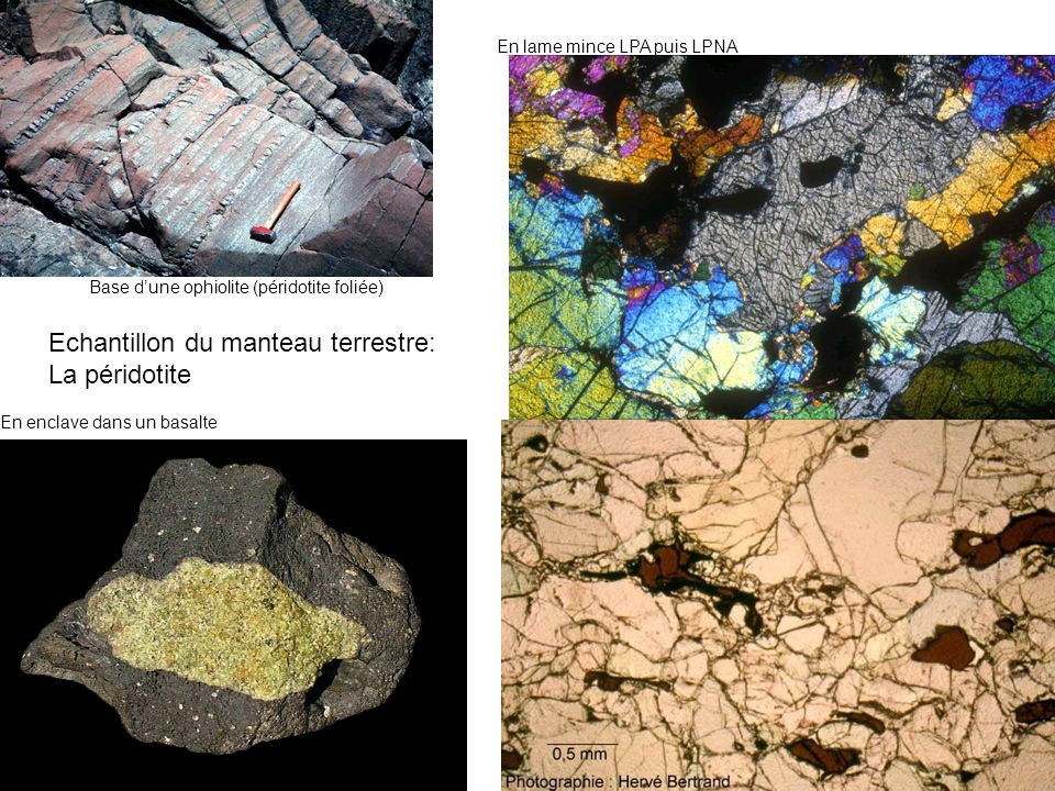 Echantillon du manteau terrestre: La péridotite