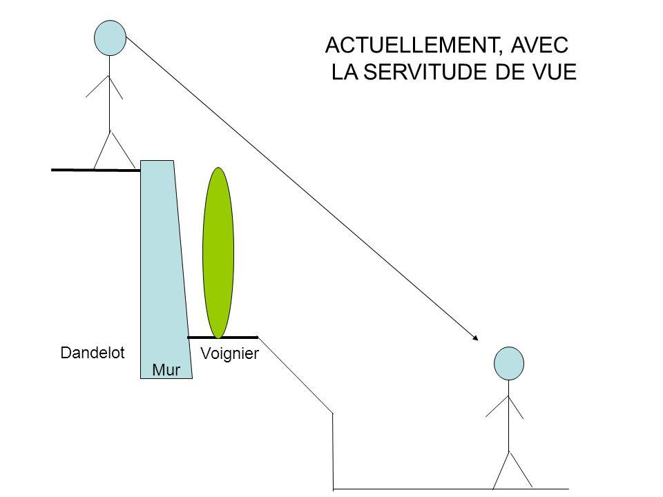 ACTUELLEMENT, AVEC LA SERVITUDE DE VUE Dandelot Voignier Mur