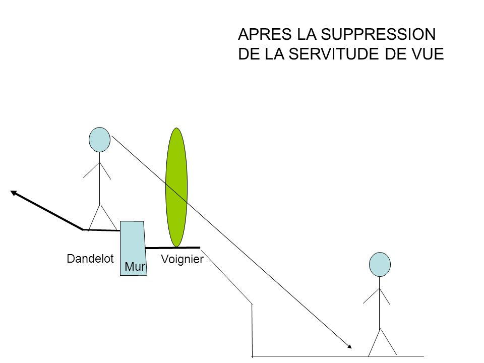 APRES LA SUPPRESSION DE LA SERVITUDE DE VUE Dandelot Voignier Mur
