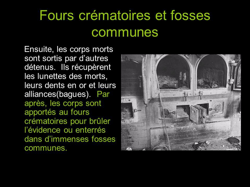 Fours crématoires et fosses communes