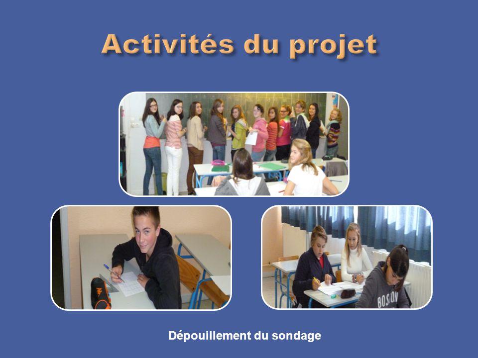 Activités du projet Dépouillement du sondage