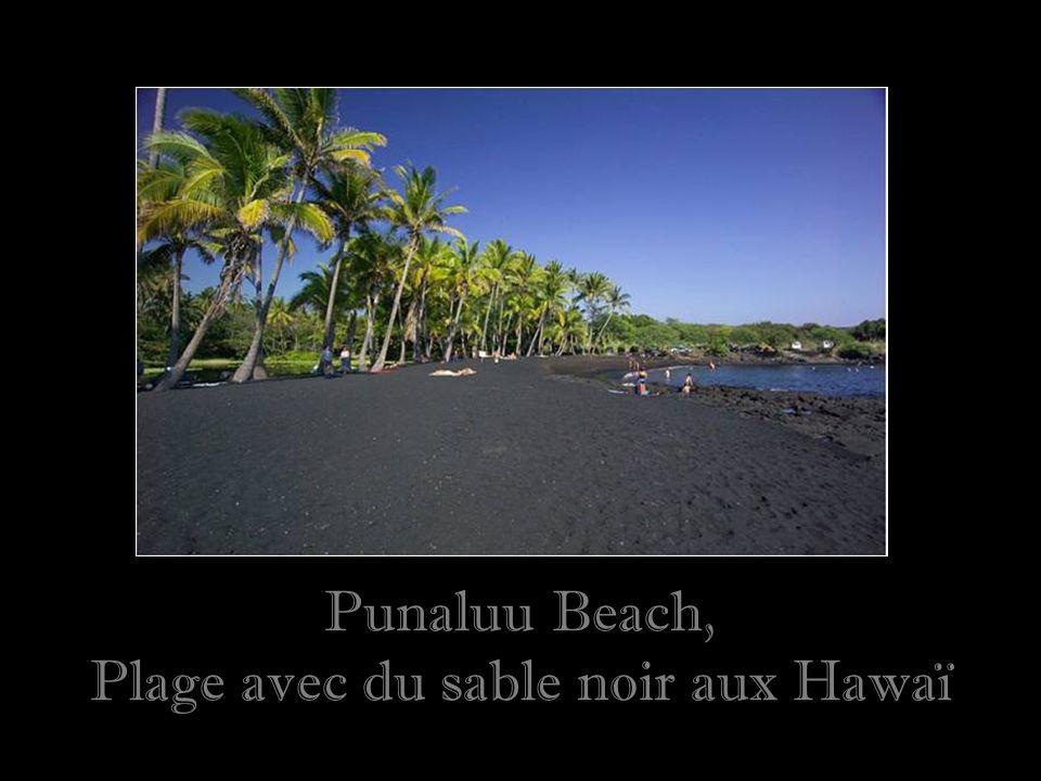 Plage avec du sable noir aux Hawaï