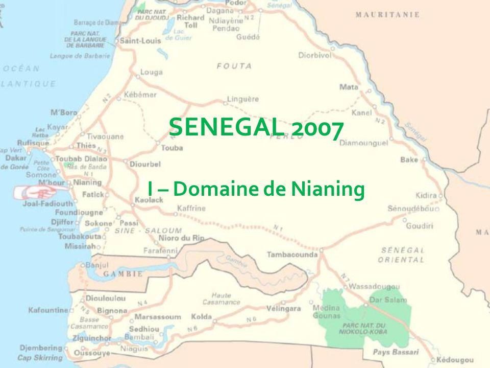 SENEGAL 2007 I – Domaine de Nianing