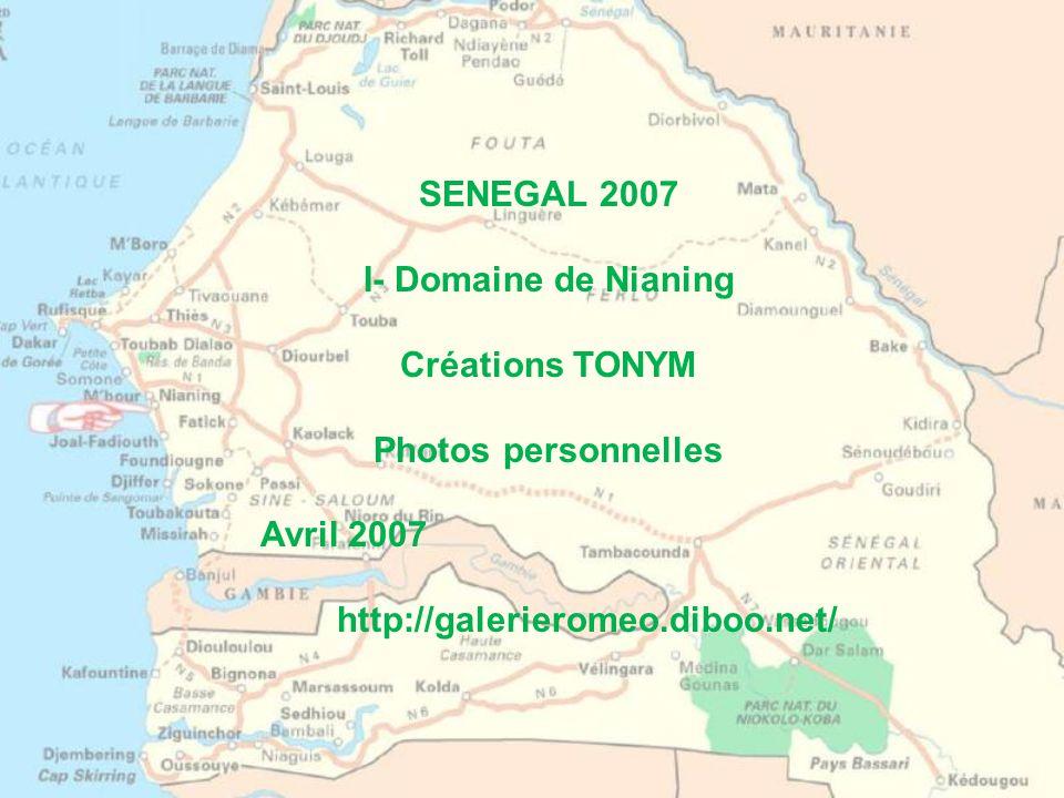 SENEGAL 2007 I- Domaine de Nianing. Créations TONYM.