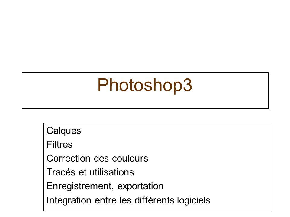 Photoshop3 Calques Filtres Correction des couleurs