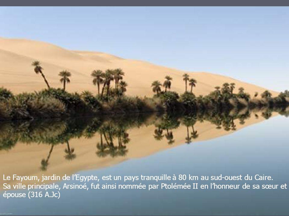 Le Fayoum, jardin de l'Egypte, est un pays tranquille à 80 km au sud-ouest du Caire.