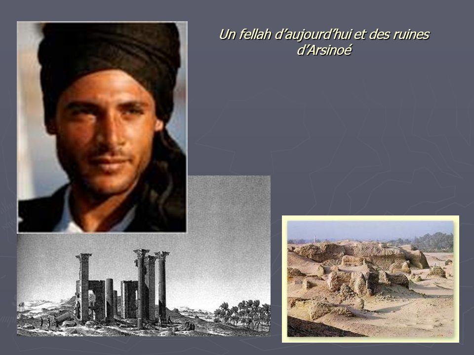 Un fellah d'aujourd'hui et des ruines d'Arsinoé