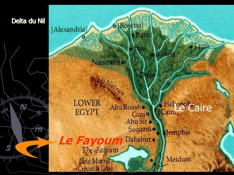Delta du Nil Le Caire Le Fayoum