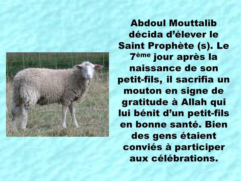 Abdoul Mouttalib décida d'élever le Saint Prophète (s)