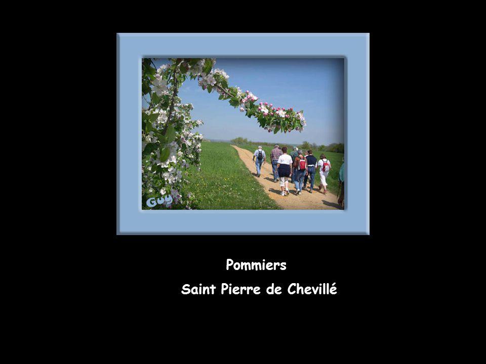 Saint Pierre de Chevillé
