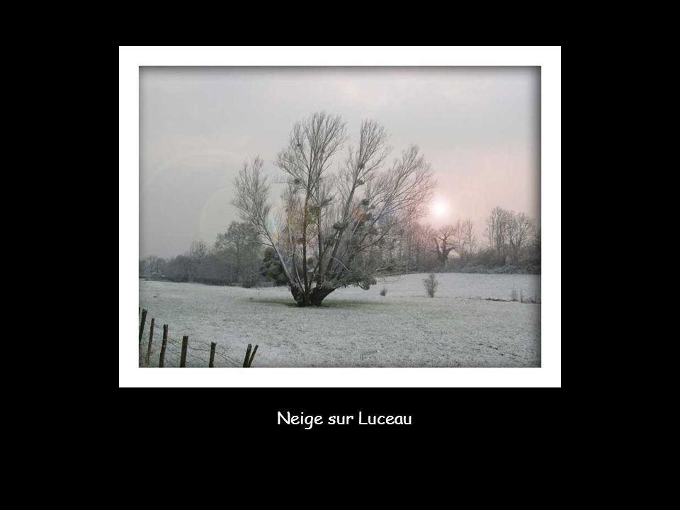 Neige sur Luceau