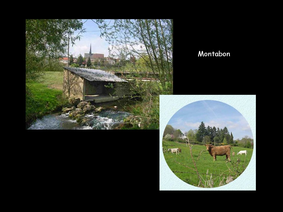 Montabon
