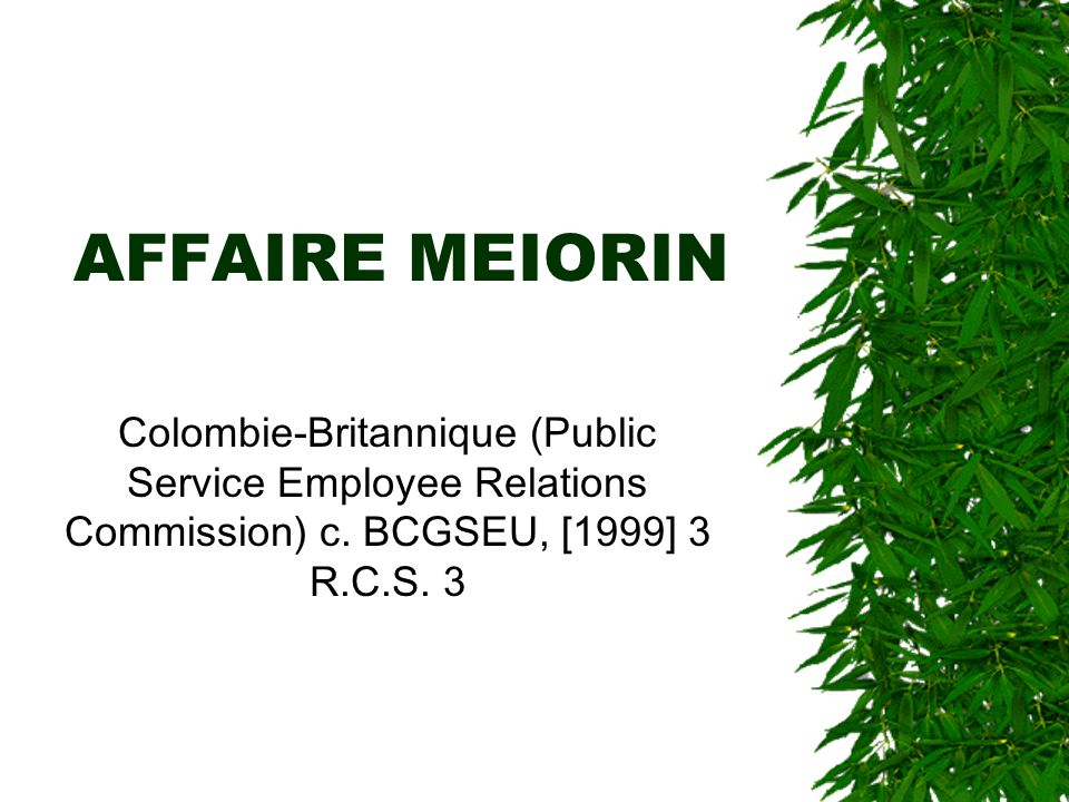 AFFAIRE MEIORIN Colombie-Britannique (Public Service Employee Relations Commission) c.
