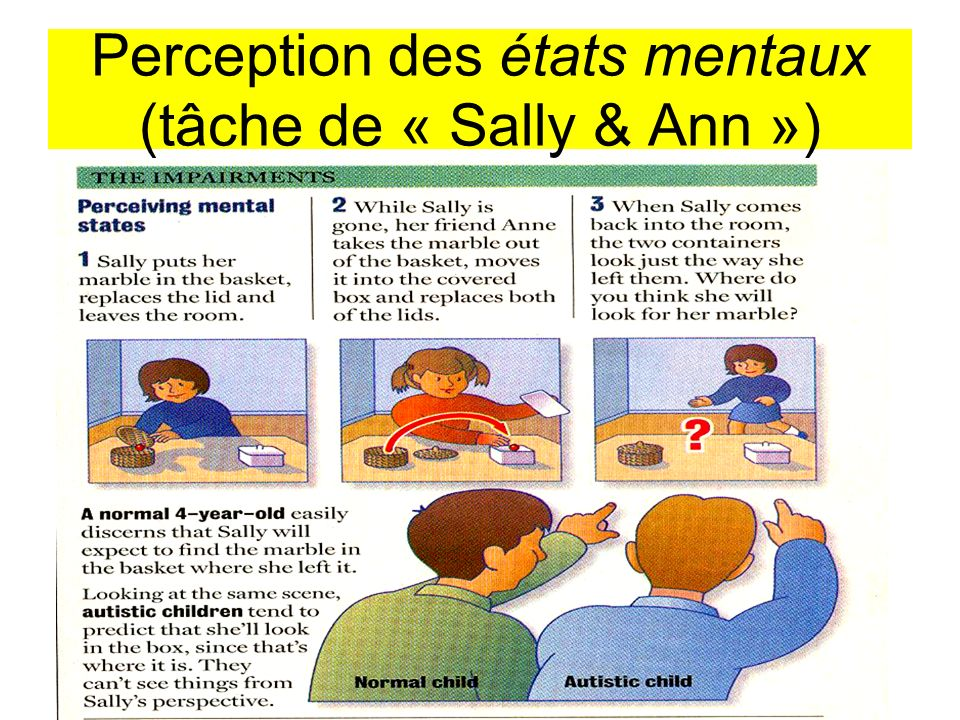 Perception des états mentaux (tâche de « Sally & Ann »)
