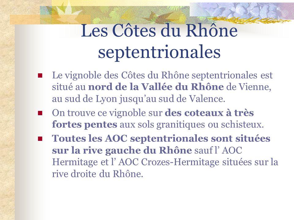 Les Côtes du Rhône septentrionales