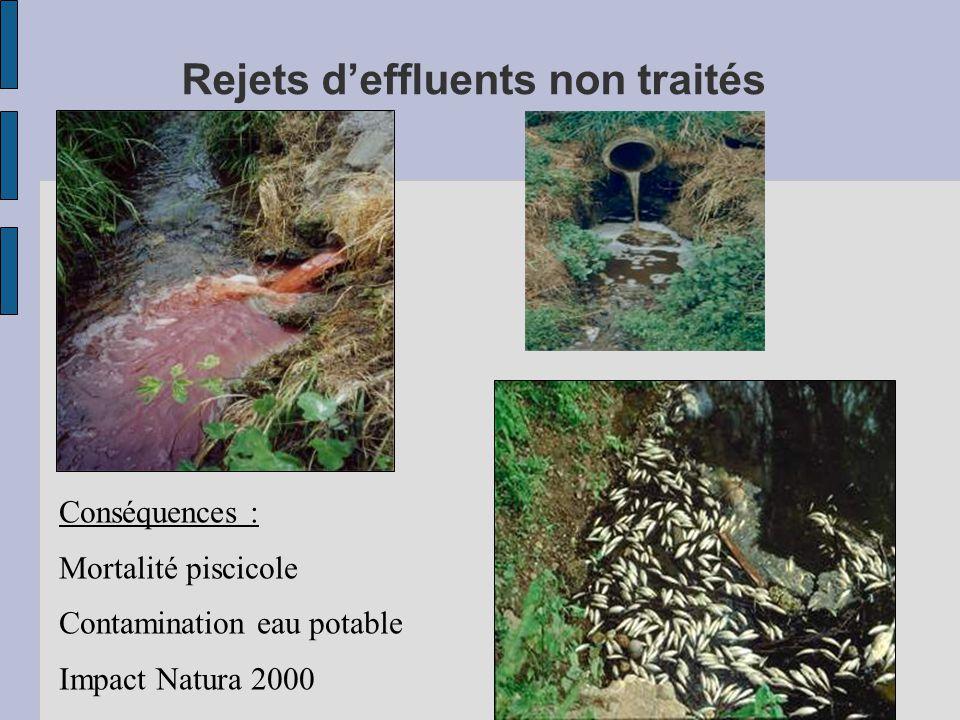 Rejets d'effluents non traités